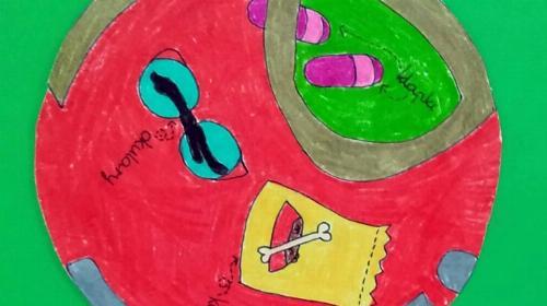 Obrazek galerii Logo Wolontariatu wybrane!!!