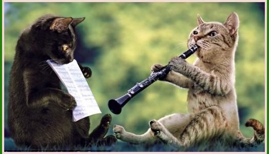 Obrazek newsa 1 października - Międzynarodowy Dzień Muzyki